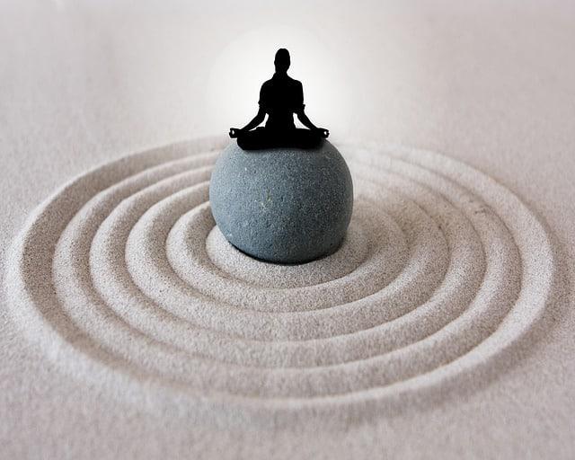 Buyers Guide: Best Sand For Zen Gardens?